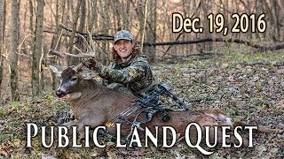Public Land DIY Trophy - Buck Bedding Areas | Midwest Whitetail