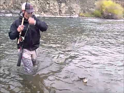 Winston Boron III-TH Micro Spey Trout Rods Review And Streamer Fishing
