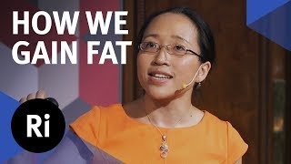 Why Do We Gain Fat?  with Eugenia Cheng