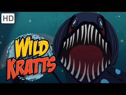 🦈🦑Wild Kratts - Ocean Explorers | Kids Videos