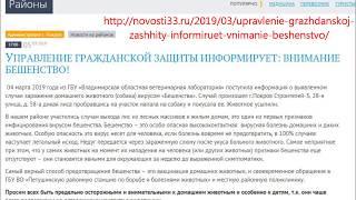 2019 03 04 Бешенство в Покрове Владимирской области