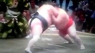 大相撲五月場所 豊響 阿武咲.