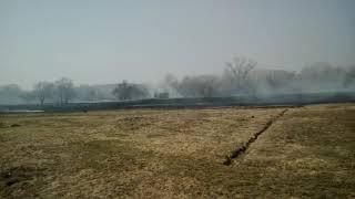 Пожар в окрестностях Чернигова