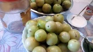 241 how to preserve amla indian gooseberry hindi urdu 10 1 17