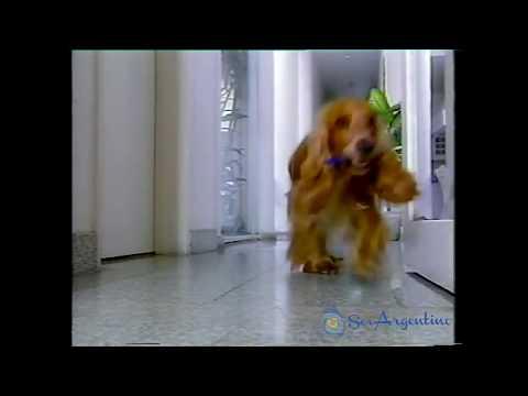 Bic - Perro - Publicidades antiguas