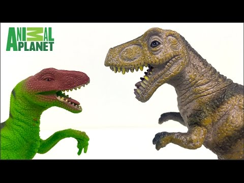 ANIMAL PLANET DINOSAUR COLLECTION WITH T-REX STEGASAUROS BRACHIOSAUROS & APACASAUROS - UNBOXING