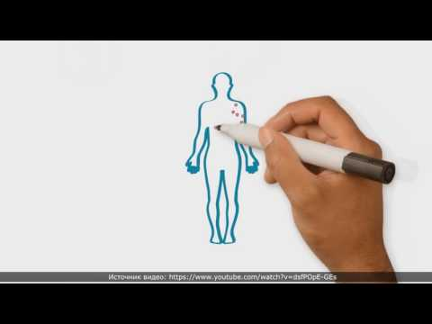 Фазы клинических исследований