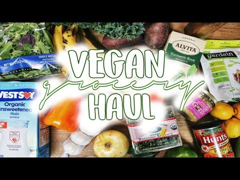 Vean Grocery Haul! ft. Trader Joe's, Stop Shop, Health Emporium | Elena Escobar