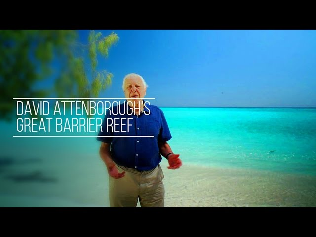 David Attenborough - Great Barrier Reef - 1/3 [HD]