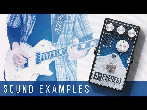 A+ EVEREST Reverb-Delay | Sound Examples (Les Paul)