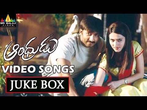 Andhrudu Video Songs Back to Back | Gopichand, Gowri Pandit | Sri Balaji Video