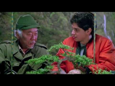Raices Fuertes Miyagi Karate Kid 3 Youtube