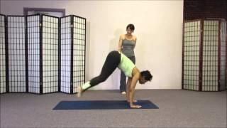 Workshopping  Chaturanga Dandasana (4 Limbed Staff Pose The Yoga Push-Up)