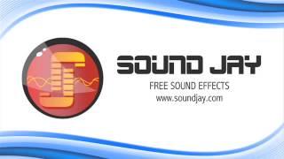 Vomiting Sound Effect