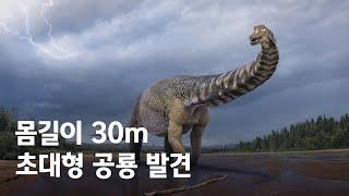 호주에서 발견된 신종 공룡 화석