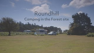 Roundhill Camping in the Forest site