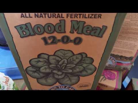 Living Organic Tea for Veg (Marijuana)