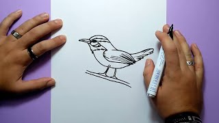 Como dibujar un pajaro paso a paso 3 | How to draw a bird 3