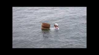 Ama at Mikimoto Pearl Island