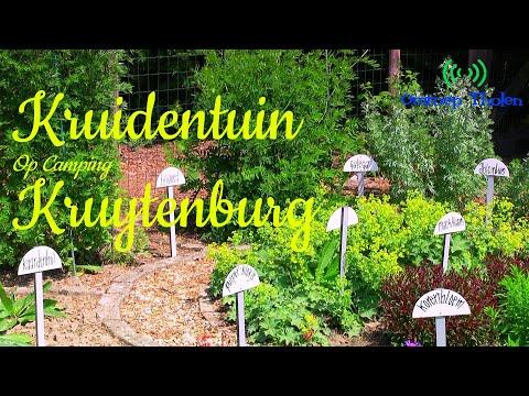 Rondleiding Kruidentuin Camping Kruytenburg - Omroep Tholen 2020