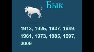 Год быка, гороскоп составленный психологом Натальей Кучеренко.