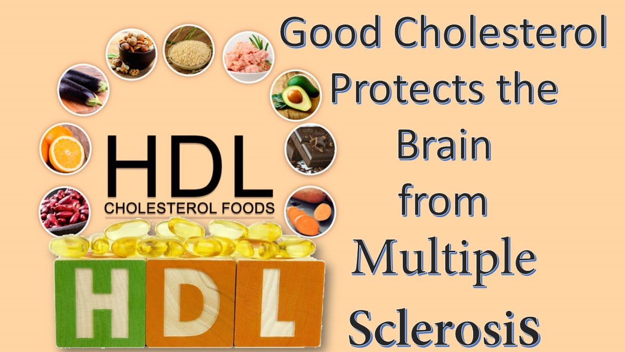 good cholesterol protects the brain from multiple sclerosis youtube. Black Bedroom Furniture Sets. Home Design Ideas