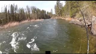 Pesca alla Trota in Torrente col Cucchiaino