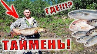 Северная Рыбалка L Поймали Тайменя