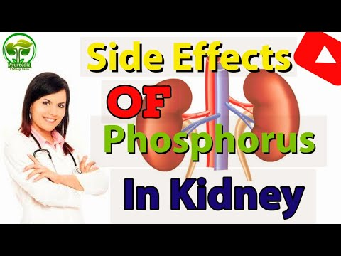 How Phosphorus Is Bad For CKD Patients|Side Effects Of Phosphorus|Ayurvedic Kidney Care In India