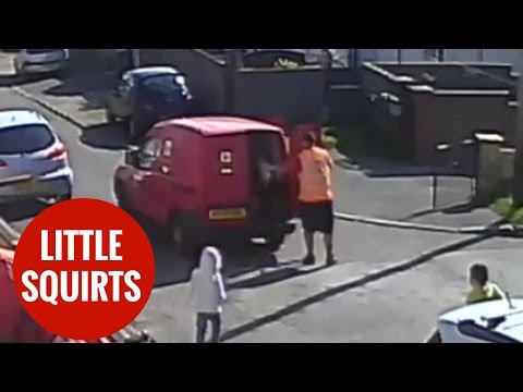 Postman confiscates water pistol after boy squirts him