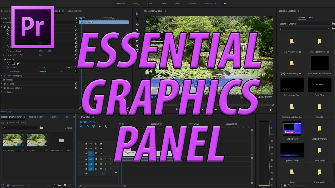 Image result for essential graphics premiere pro