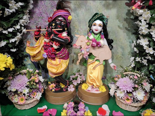 Радхика переодета в Субала. Е.С. Ананда Вардхана Свами. 22.11.2020