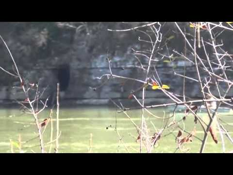 Demonbreun's Cave: Nashville, Tennessee, U.S. National Register of Historic Places(Rare Footage)