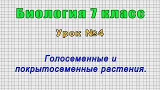 Биология 7 класс (Урок№4 - Голосеменные и покрытосеменные растения.)