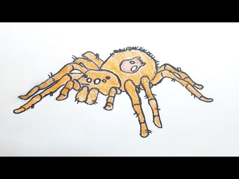 Как нарисовать Паука||How To Draw A Spider