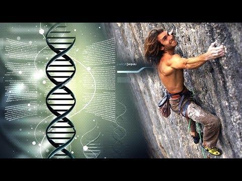 Perfect Genetics For Rock Climbing
