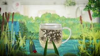 Glass TeaCups, Teapots & Infusers by Noble Leaf - Morning Ritual