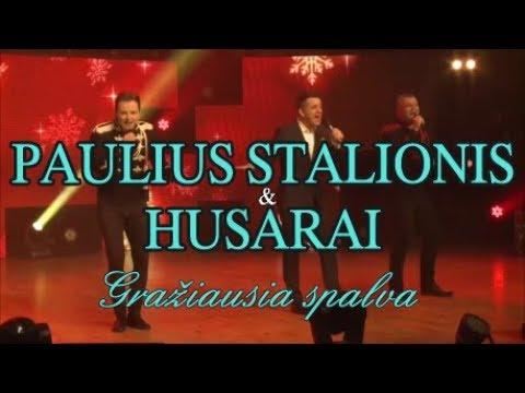 PAULIUS STALIONIS ir HUSARAI -