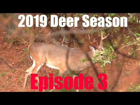 BIG BUCKS CLOSE! 2019 Deer Season- Episode 3. Hunting Tyler's Biggest Archery Buck