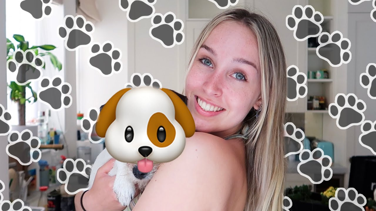 i got a puppy!!