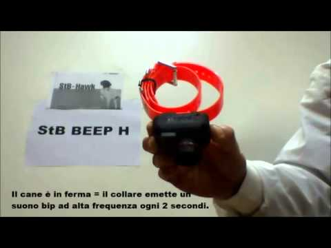 Beeper Dogtra STB H