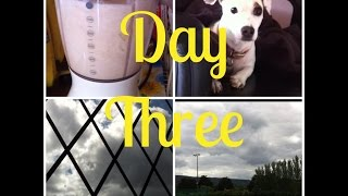 June Vlogs | Day 3: Playing With Bubbles And A Trip To The Park