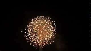 2012 大曲の花火 【内閣総理大臣賞】日本の花~侘寂~  山内煙火店 thumbnail