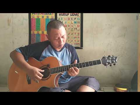 Leaving On a Jet Plane - John Denver (fingerstyle cover)