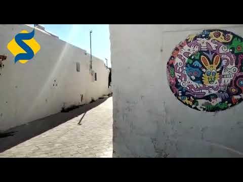 جولة لدعم السياحة بالجنوب التونسي
