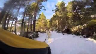 Aviemore Siberian Husky Club Race Press Day 2015