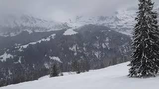 [200119]스위스(1)