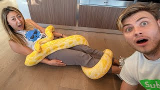 GIANT SNAKE TRIED TO EAT HER!!