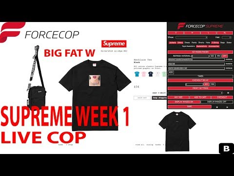 SUPREME SS18 WEEK 1 LIVE COP (I GOT EVERYTHING EXCEPT THE COLOR)