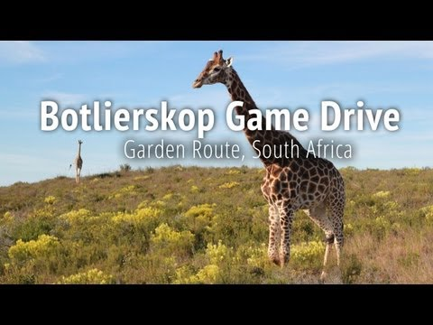 Botlierskop Private Game Reserve - Mossel Bay, Garden Route, South Africa